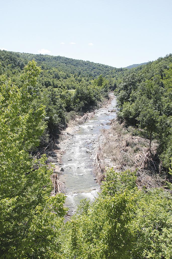 Река Еньовица в с. Габровци е затлачена с изкоренени дървета в продължение на 1300 метра.