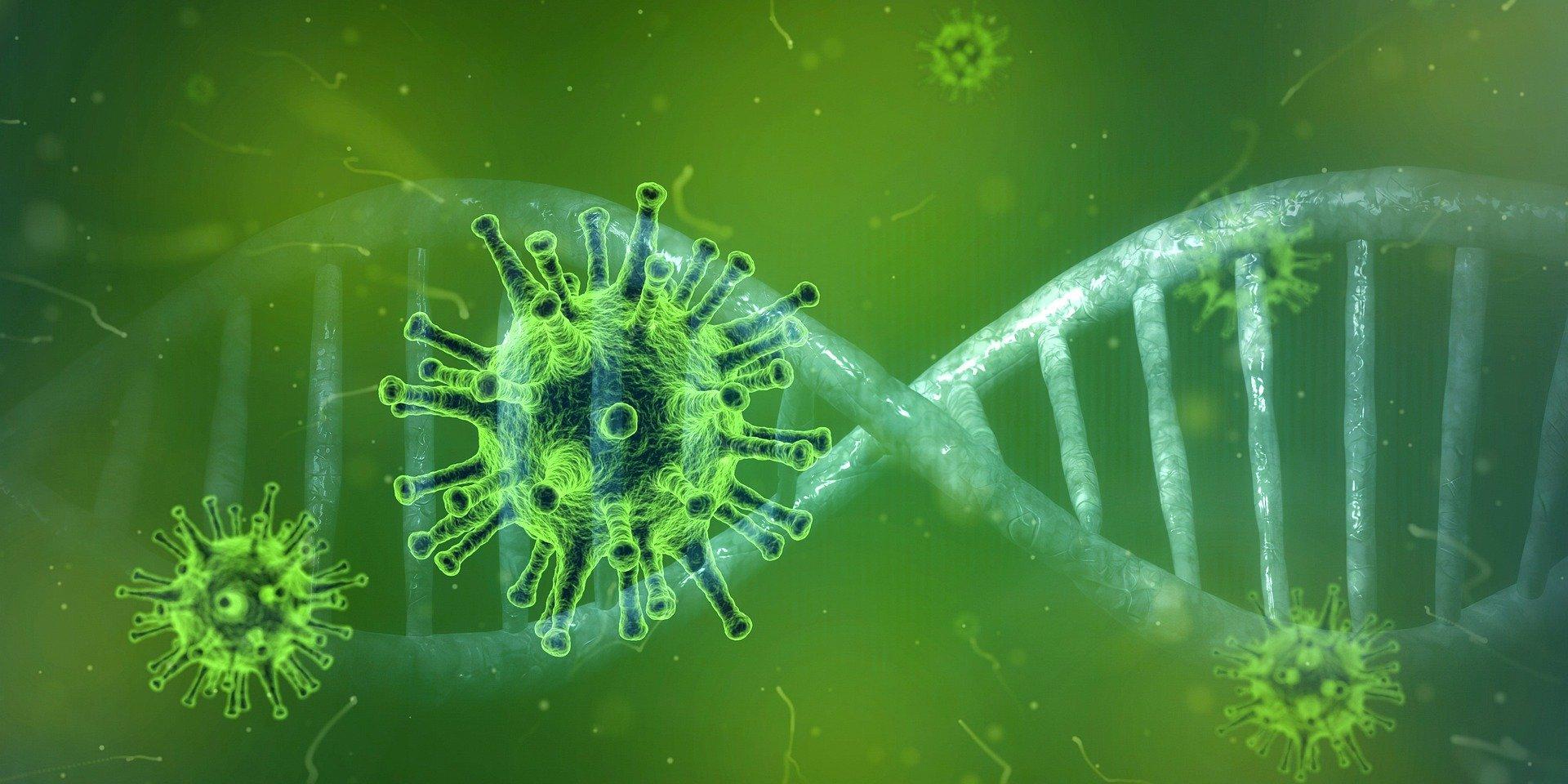 coronavirus-covid-korona-zaraza-test-kovid_2
